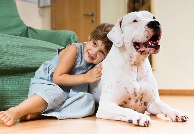 Animais e Crianças em Condomínios